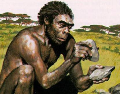 hominidos-diestros